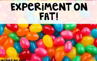 Fat Experiment: Part Two